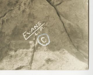 Sennett Bathing Beauty Evans Phyllis Haver Photograph Flapper