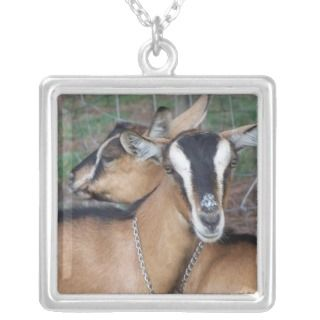 Alpine Oberhasli goat cross young does kids Custom Jewelry
