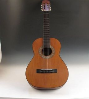 Hondo 2 Acoustic Guitar Model Hoon