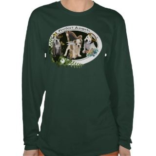 American Bulldog Perfect angels 3 Shirt