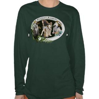 American Bulldog Perfect angels 3 Shirt
