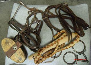 Horse Equestrian Training Whip, Rommel Reins, Santa Barbara Port Bit