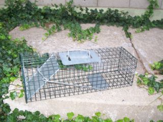 Small Advantek Animal Cage Trap