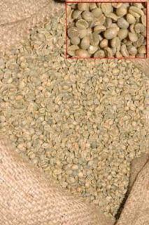 lbs Yemen Mocha Marari Green Coffee Beans