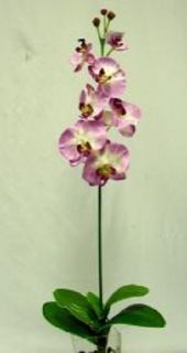 33 in Phalaenopsis Orchid PURPLE Silk Flowers, Artificial Plants