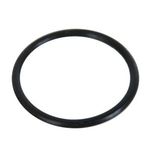 Ring for Intex Salt Water System Pool Pump Above Ground Pool