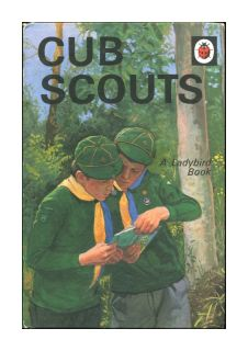 Ladybird Cub Scouts Series 706 Matt Covers 1982 Good Condition