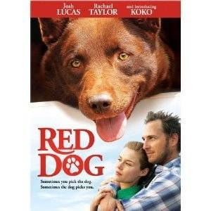 Red Dog DVD 2012 Josh Lucas Rachael Taylor KOKO