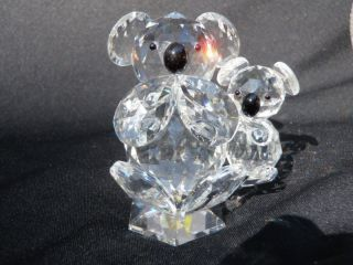 Toneva Crystal Plus Koala Bear Baby