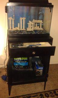 Large Fish Aquarium Fish Tank 20 Gallon