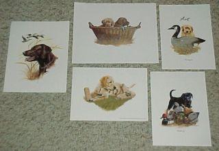 Vintage Labrador Hunting Sport Dog Prints Lot Decoy Duck Lab Art Litho