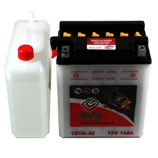 YB14L A2 Riding Lawn Mower Battery for Yard Man Beetle Yard Bug