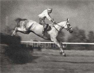 Olympics Equestrian Horse Jumping Denmark Leni Riefenstahl