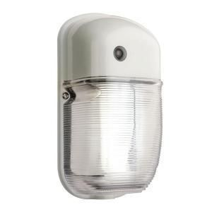 Lithonia Lighting Wall Mount Outdoor White Fluorescent Light Mini Pack