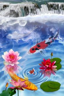 LIVE KOI FISH GARDEN FALLS SHOWA FROG POND PAINTING LIMITED EDITION 3