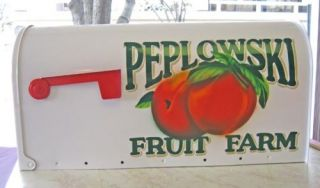 Your Design Large Airbrushed Hand Painted Mailbox