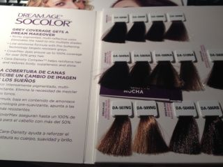 Matrix Socolor Hair Color Swatches Only NG Nuetral Ash Mocha