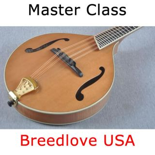 Breedlove Master Class Alpine Mandolin Made in USA Custom Shop