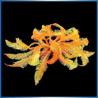 Artificial Fake Coral for Fish Tank Aquarium Decoration Garden Pool