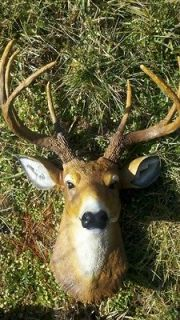 BUCK DEER HEAD 8 POINT LARGE WHITETAIL MOUNT FAUX