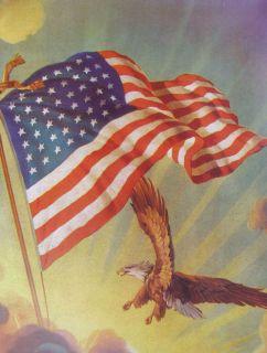 American Flag Eagle. 11 X 14