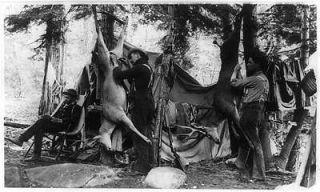 Skinning deer,camping,h unting,bucks,t ents,dwellings ,men,equipment