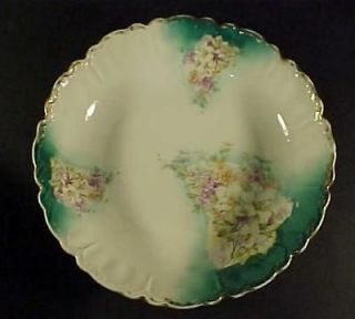 Royal Bavarian China Germany 10 1/2 Bowl