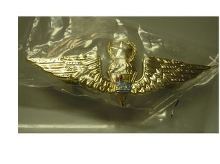 FOREIGN BADGES   VENEZUELA MASTER JUMP WINGS