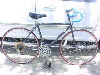 Trek 022 Ishiwata CrMo Road Bike Gold Araya 700c Wheels Bicycle Wings