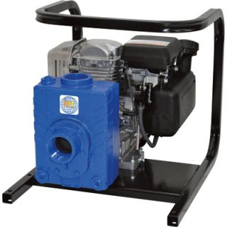 IPT Cast Iron Ag/Water Pump   127cc Engine, 2in. Ports, Model# 2AG4ACV