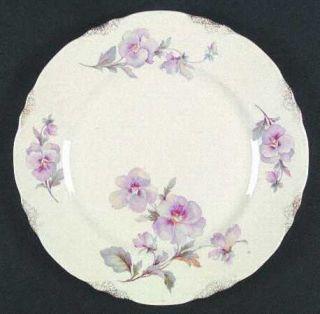 Taylor, Smith & T (TS&T) Tst147 Dinner Plate, Fine China Dinnerware   Gold Daubs