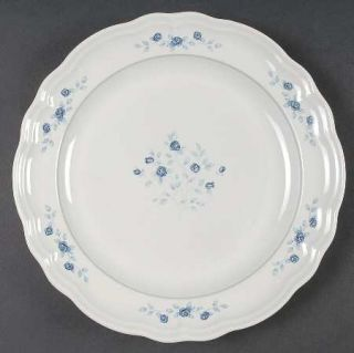 Pfaltzgraff Poetry Glossy Dinner Plate, Fine China Dinnerware   Glossy, Newer, B
