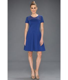 Halston Heritage S/S Fit/Flare Ponte Dress w/ Mesh Detail Womens Dress (Blue)